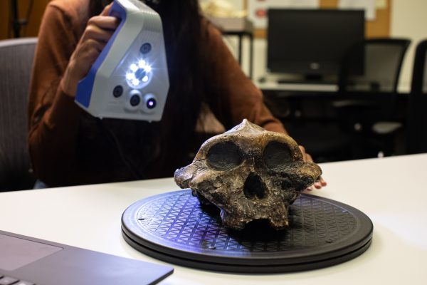 Artec Space Spider scanning a skull at UTM