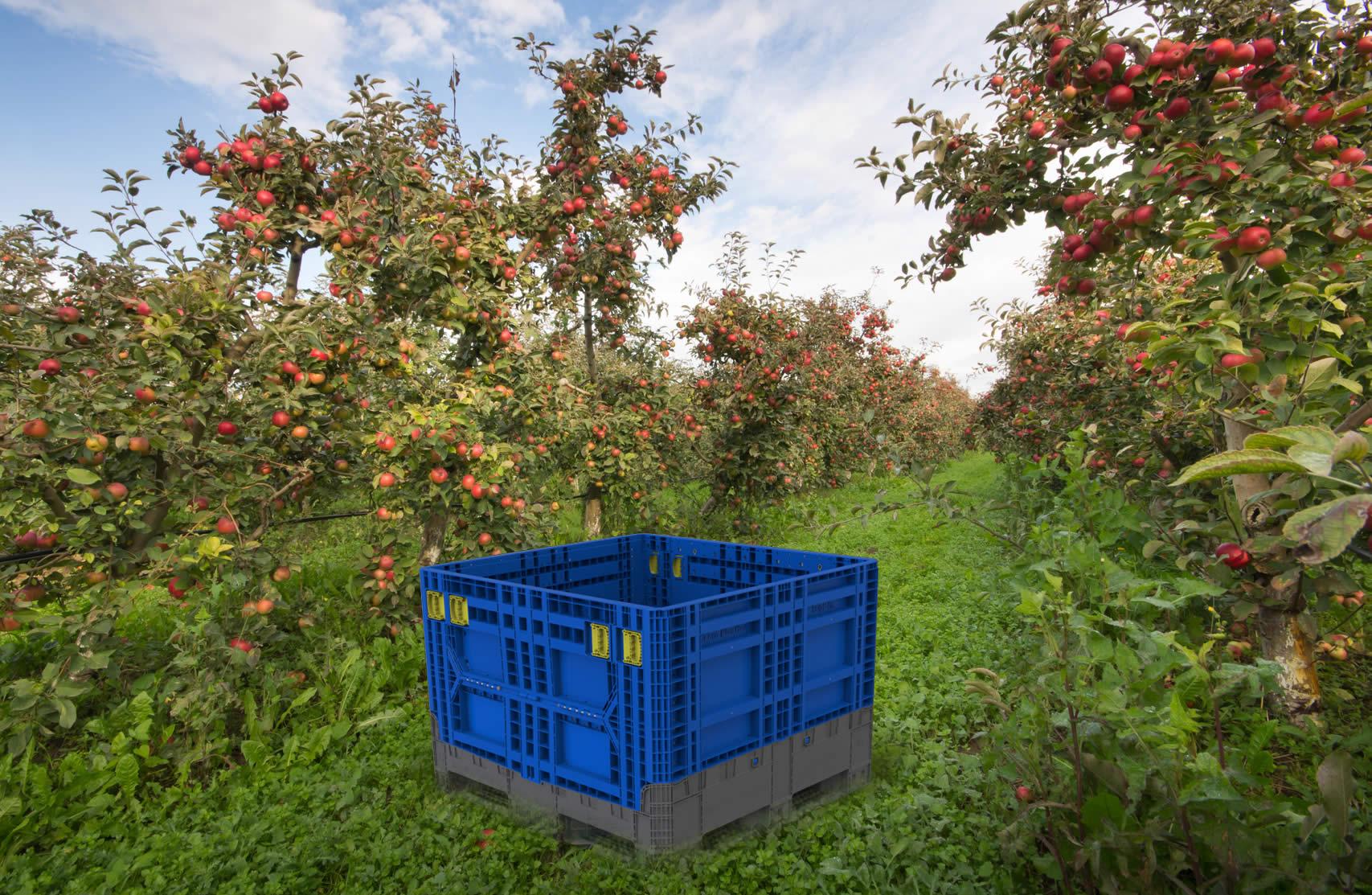 Agricultural bin design — Javelin 3D Solutions