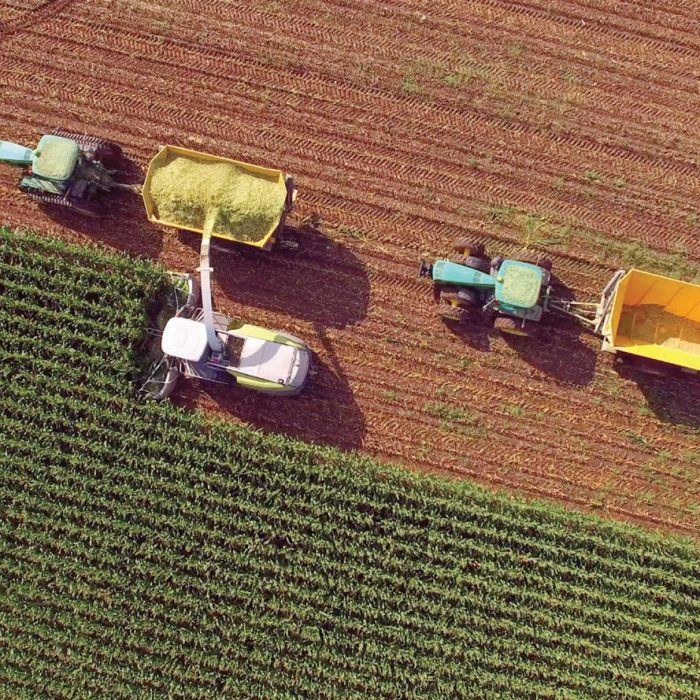 Agriculture industry design