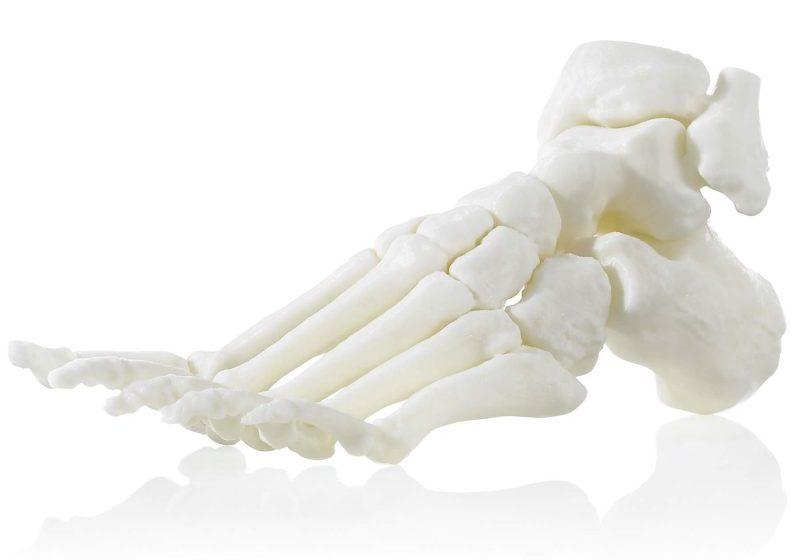 ABS M30i 3D printed foot