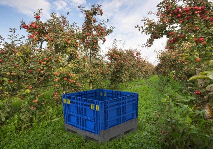 Agricultural bin design