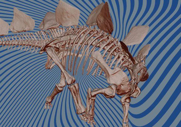 Dinosaur 3D scan