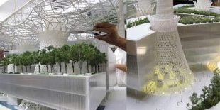 Peter McCann Architects