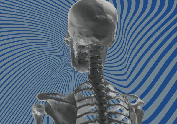 Skeleton 3D Scan