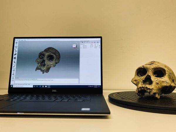 Scan of a skull in the UTM Anthropology department for virtual learning