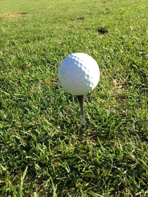 3d print golf tees