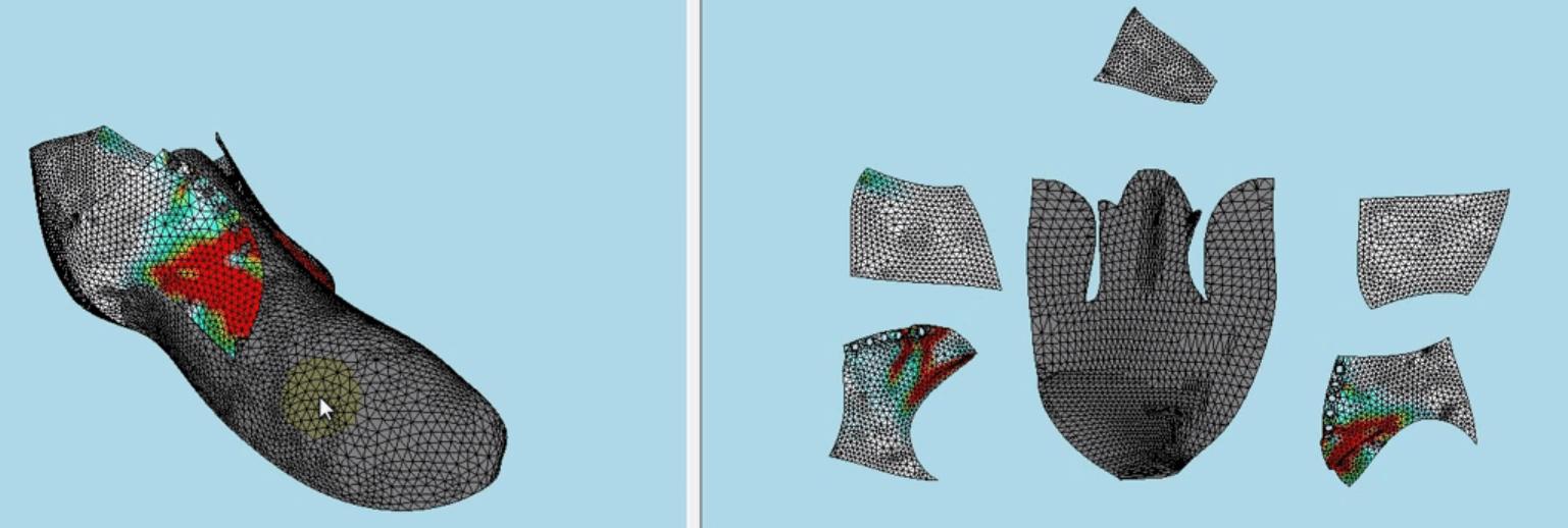 Flattened Shoe Design