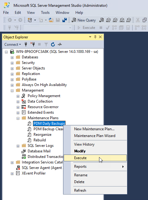 Manually execute a backup within the SQL Server Management Studio