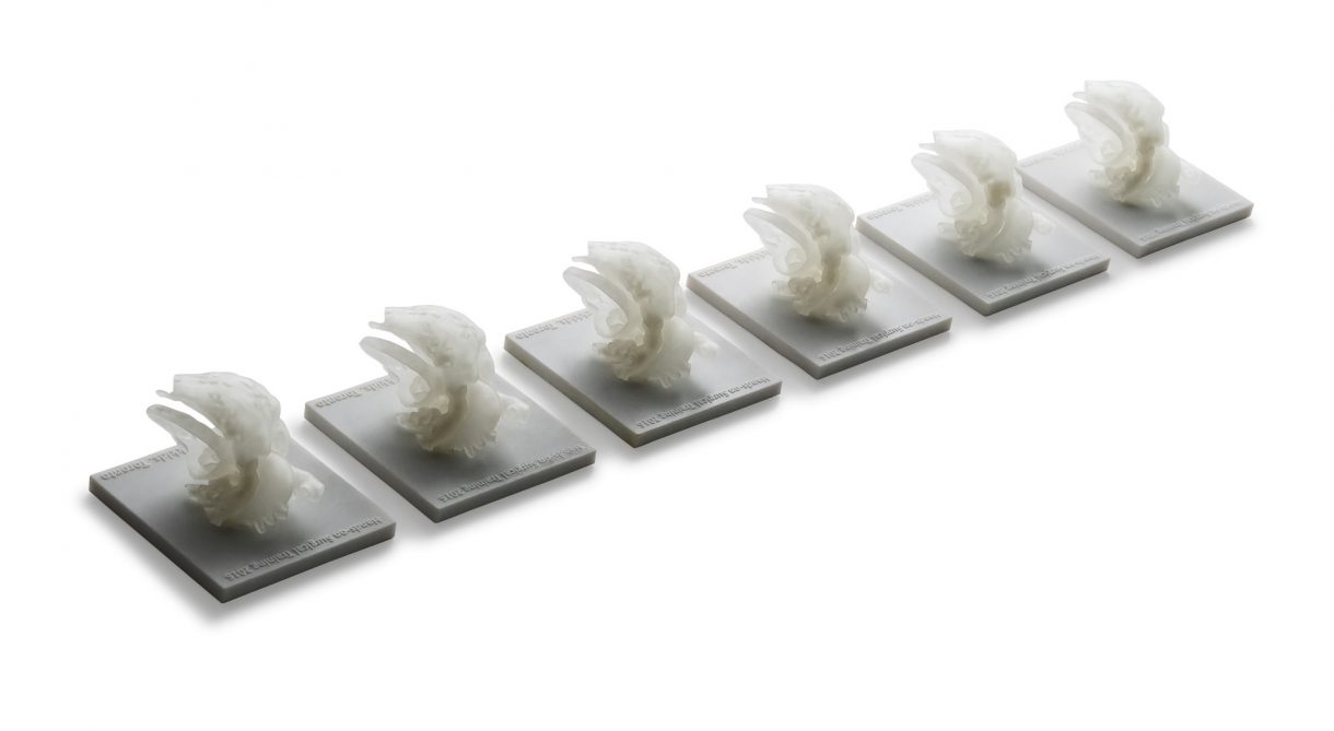 Cardiac 3D printed medical model