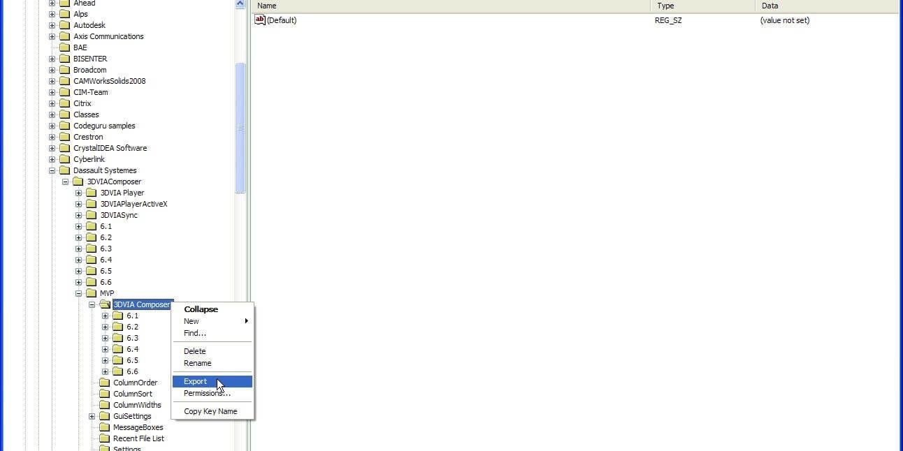 3DVIA Composer Reset Registry